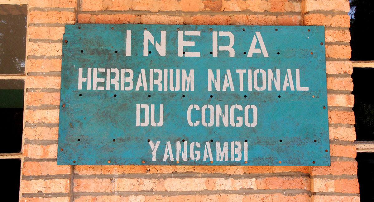 Yangambi Herbarium YBI