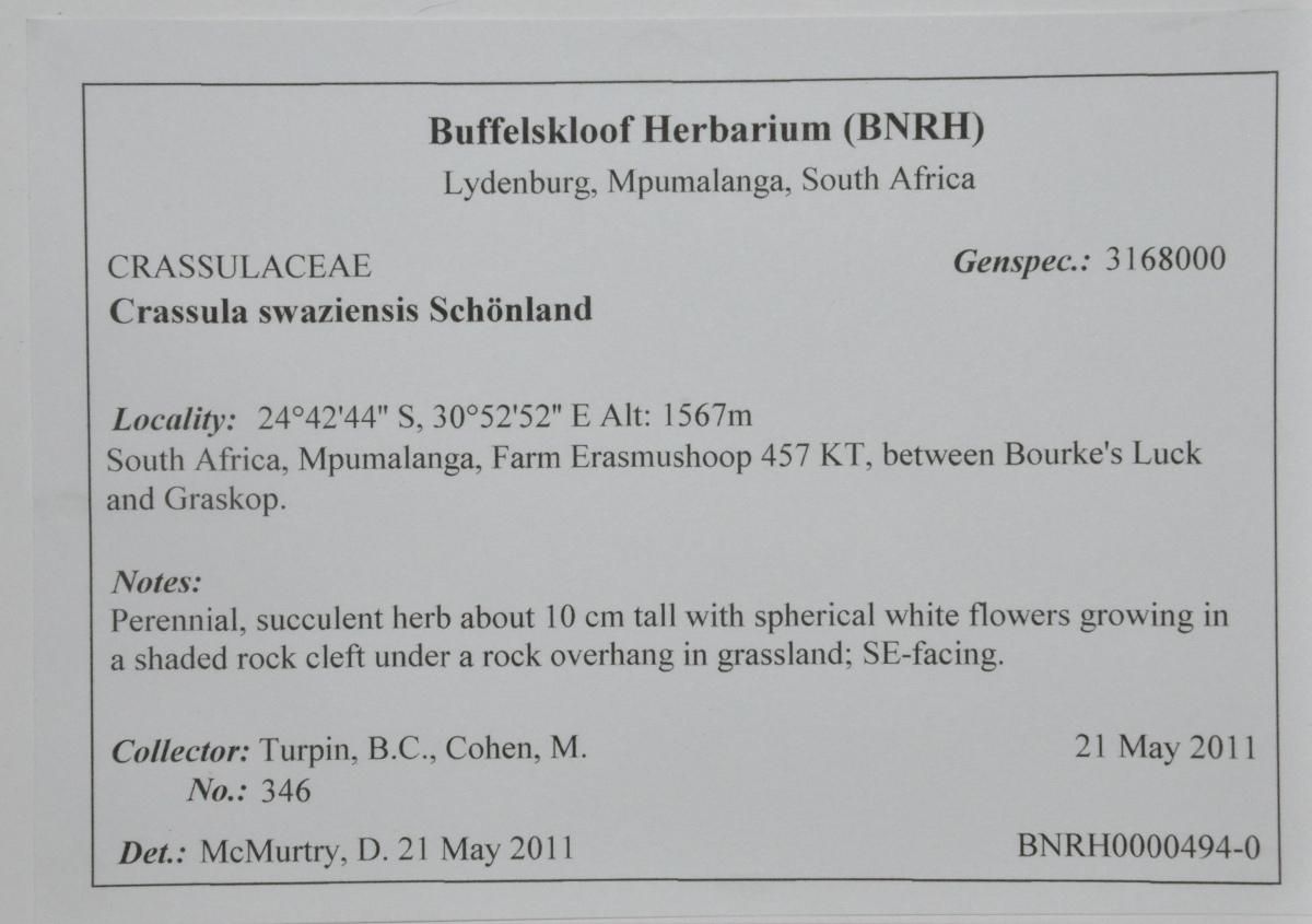Sample specimen label