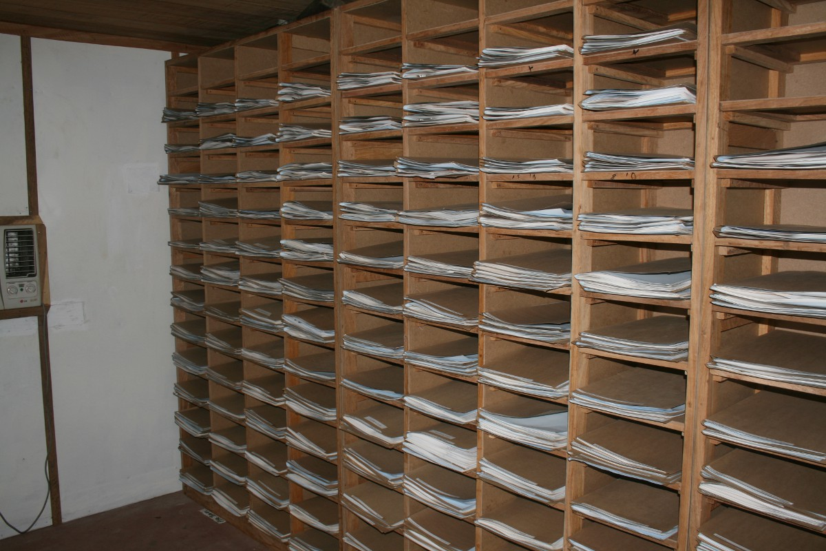 Shelves of plant specimens