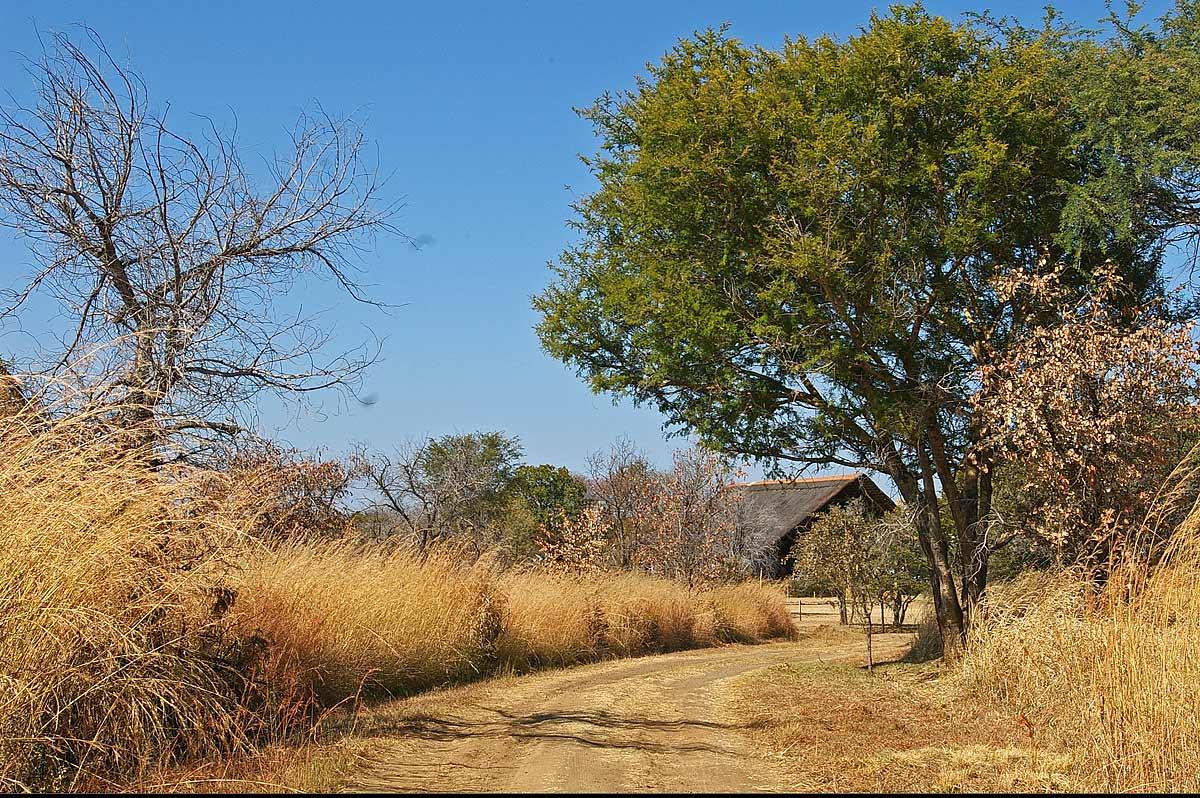 Entrance to lodge, Livingstone Guest Farm