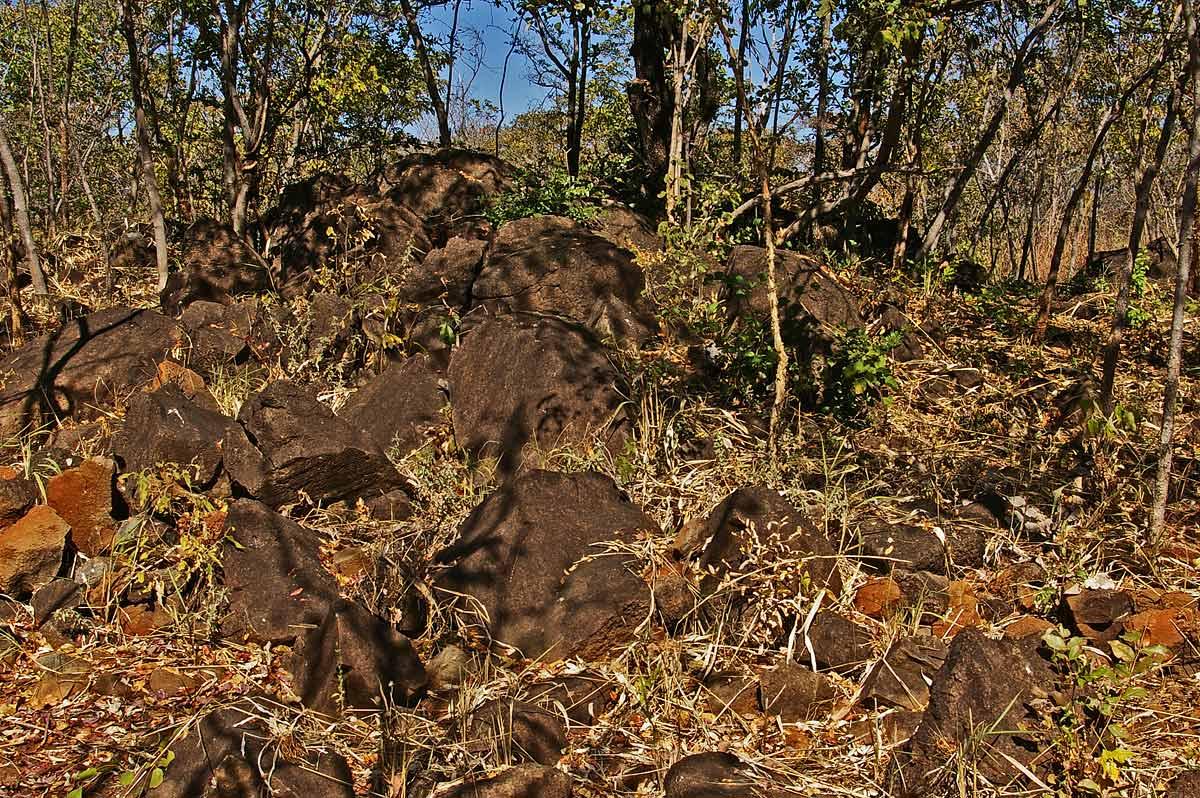 Rocky ridge (1), Livingstone Guest Farm