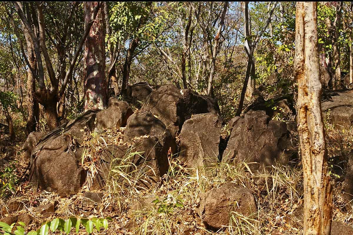 Rocky ridge (2), Livingstone Guest Farm