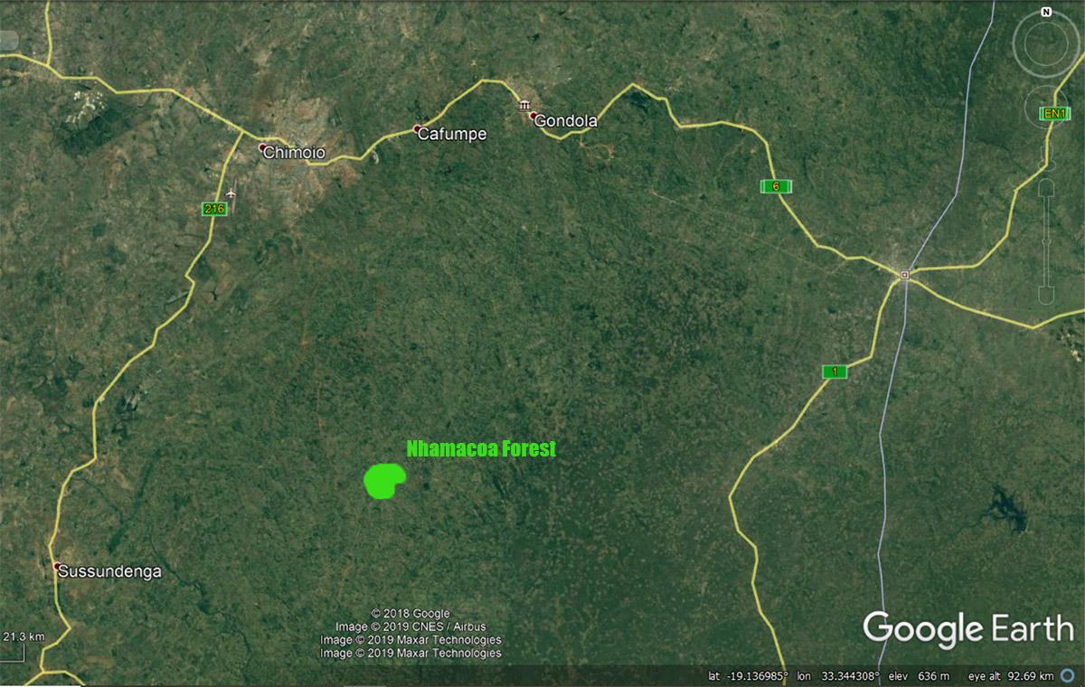 Satellite image indication location of Nhamacoa Forest