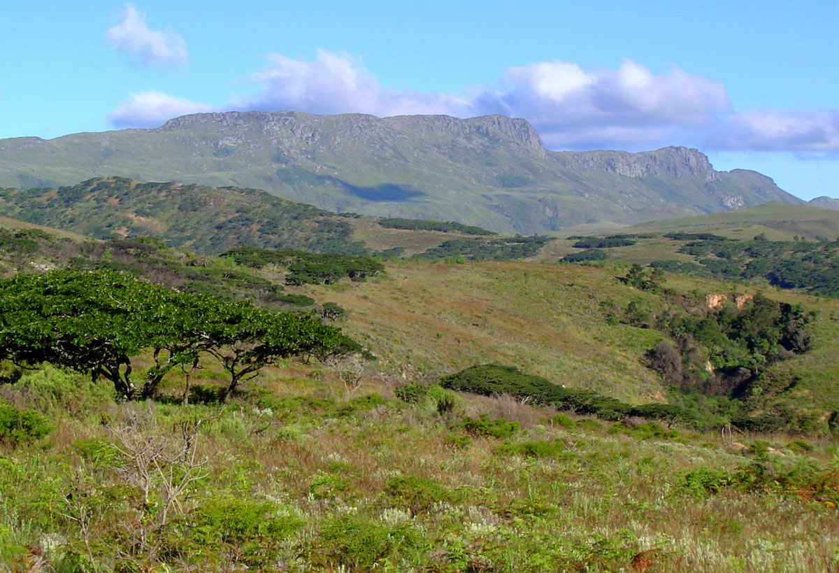Mt Nyangani on a clear day,seen from the Circular Drive.