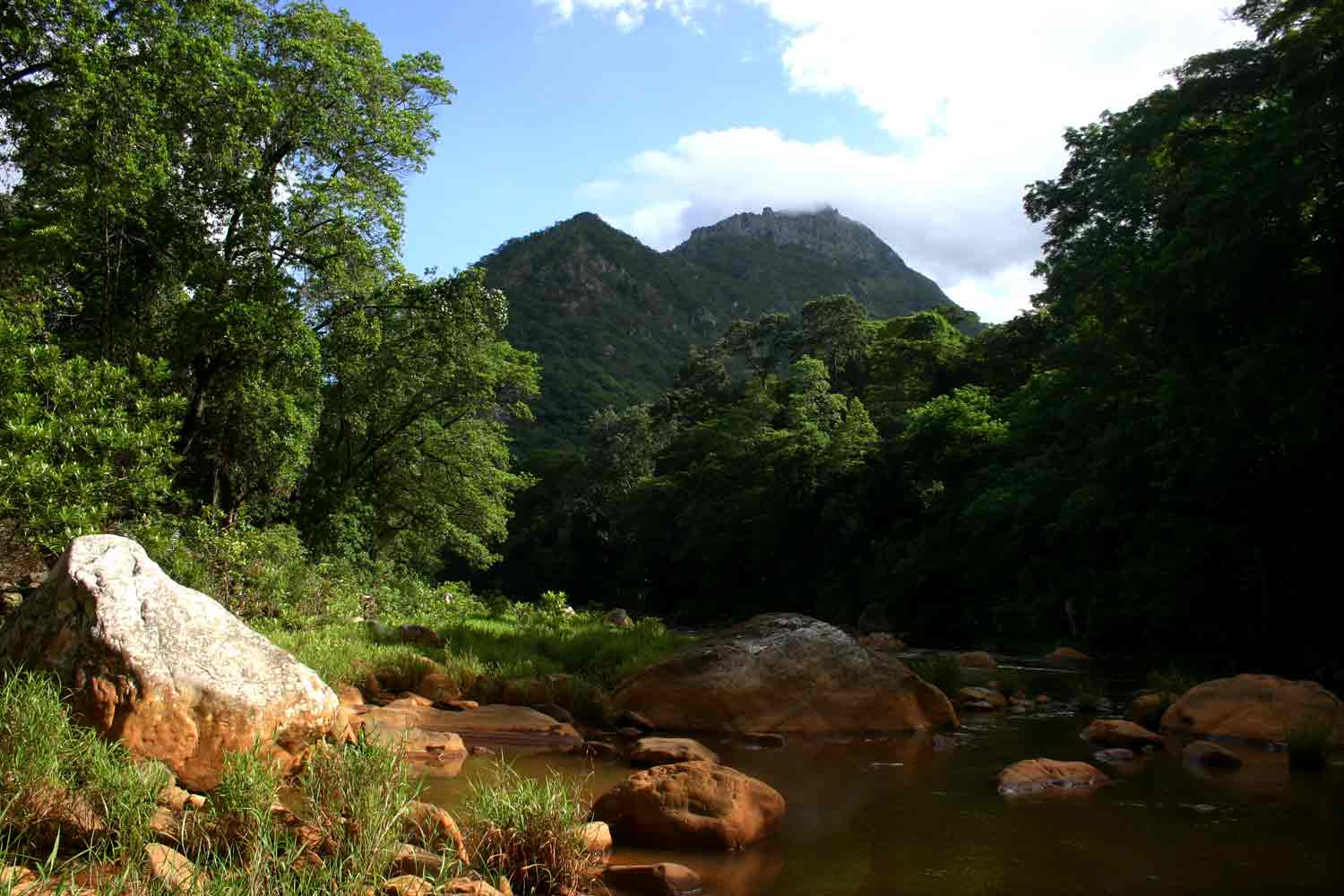 View from the banks of the Haroni River towards the southern Chimanimani Mts