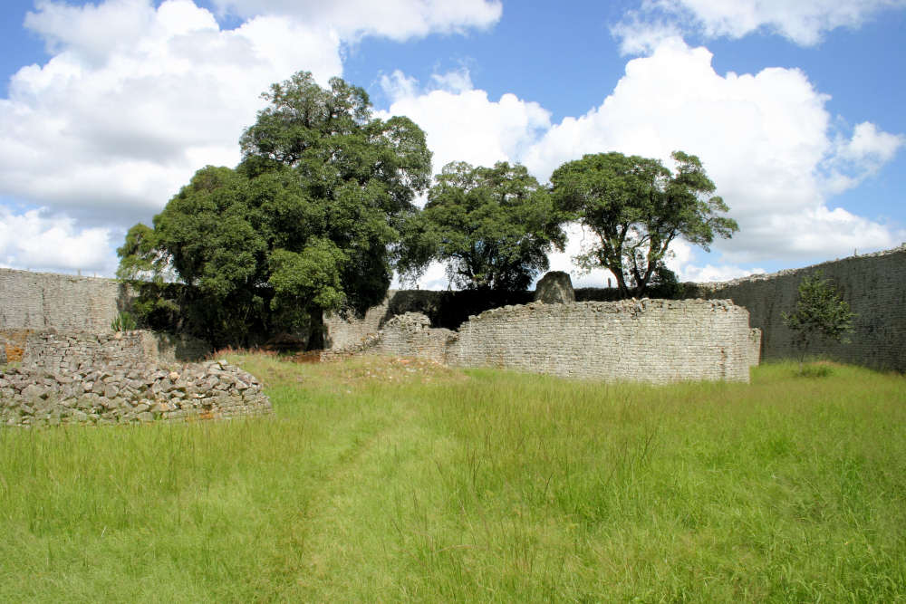 View of Mimusops zeyheri trees within the Great Enclosure, Great Zimbabwe