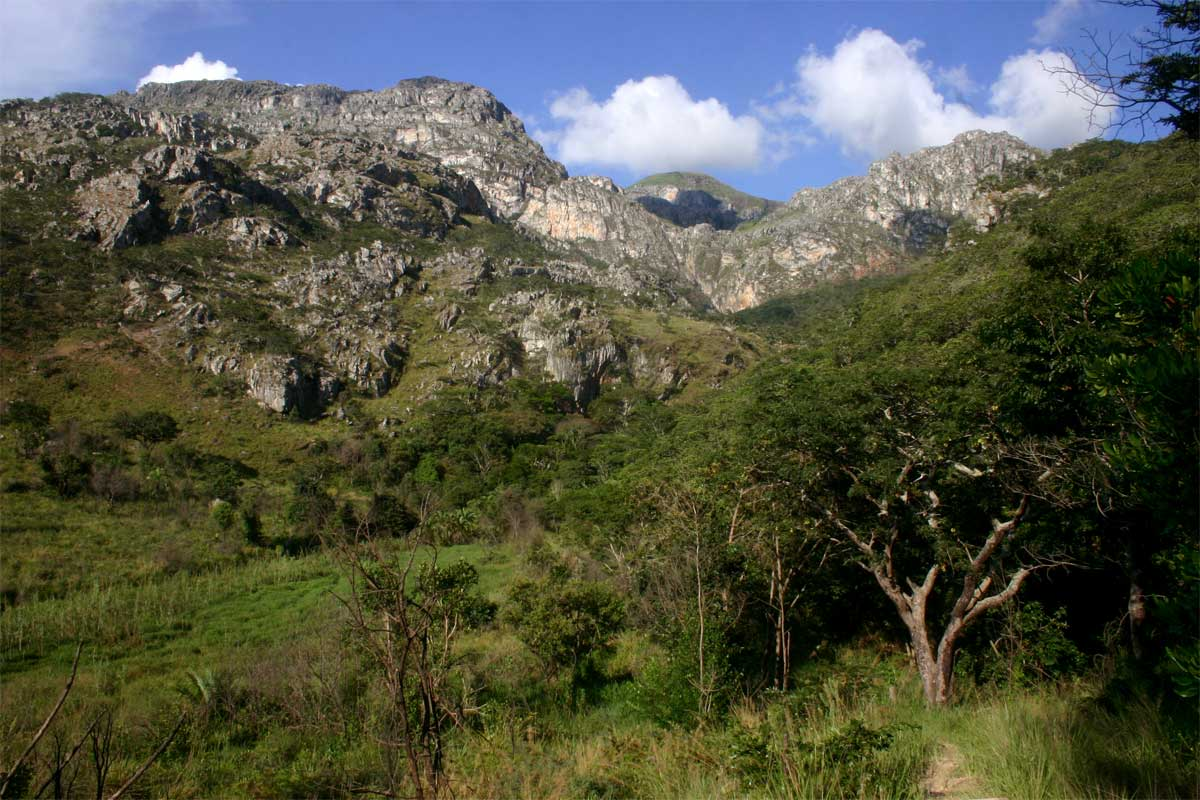 View towards the Chimanimani Mts from the path to Tessa's Pool