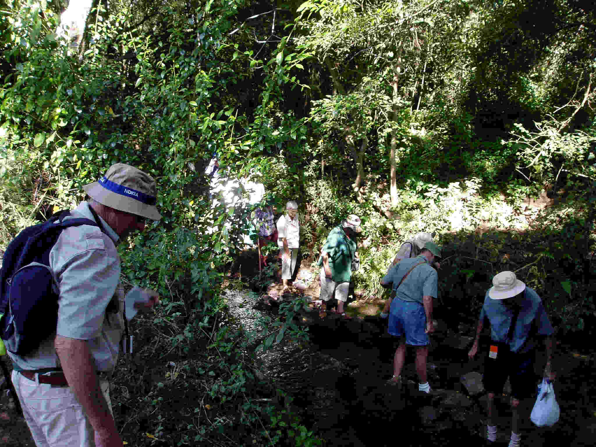 The Tree Society crosses the still-flowing Umwindsi river