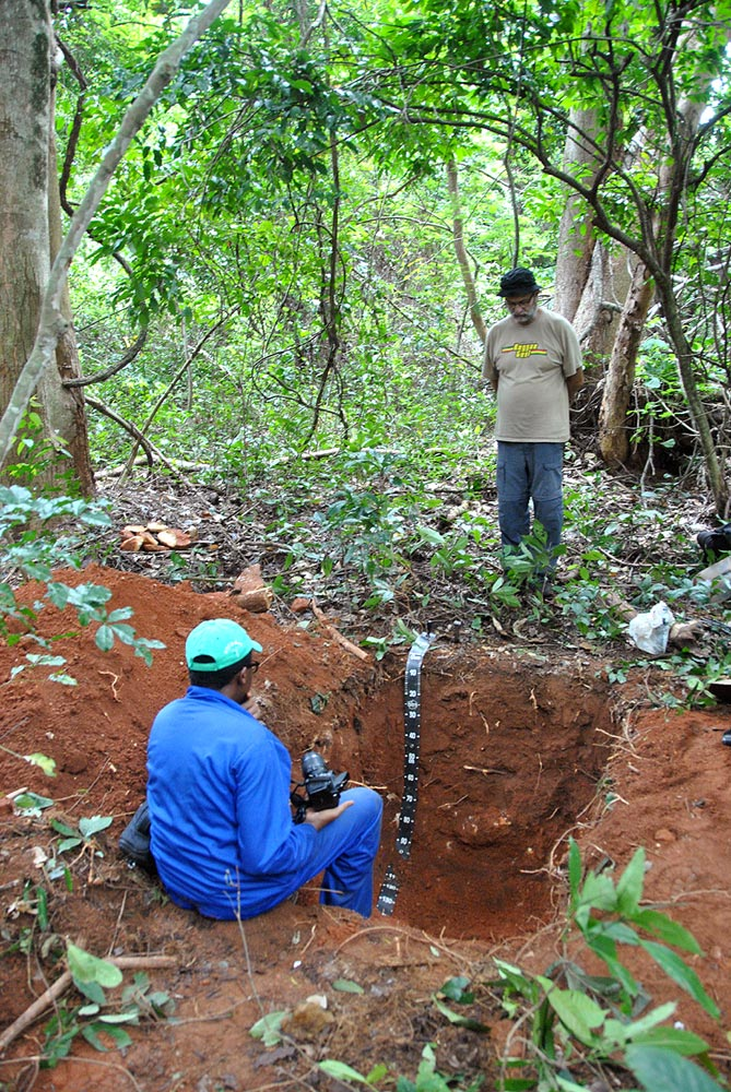 Studying a soil profile pit in Zomba forest