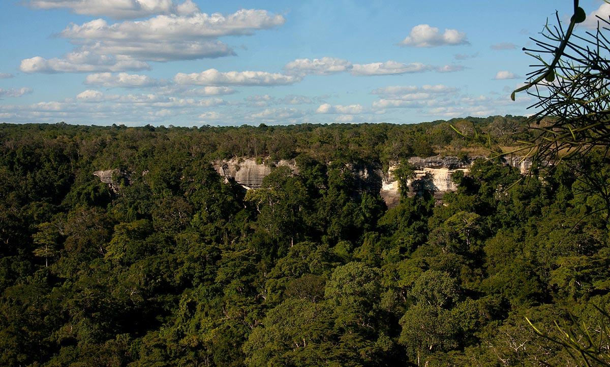Rim of the Nhagutua limestone gorge, the first site of the survey.