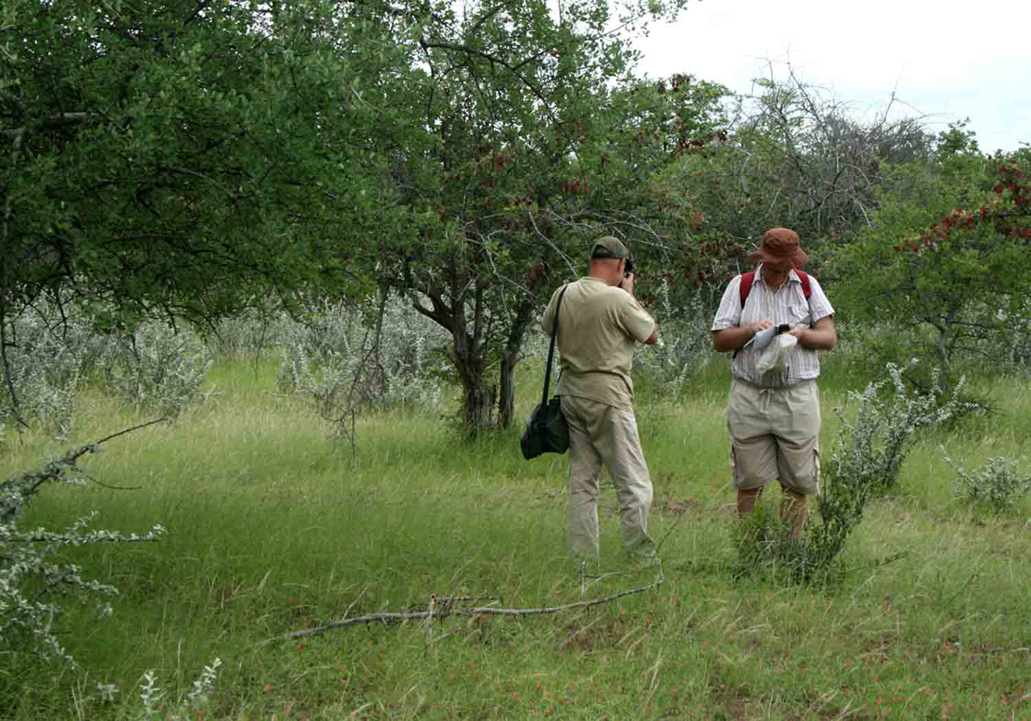 Bart (left) and Mark, in the field.