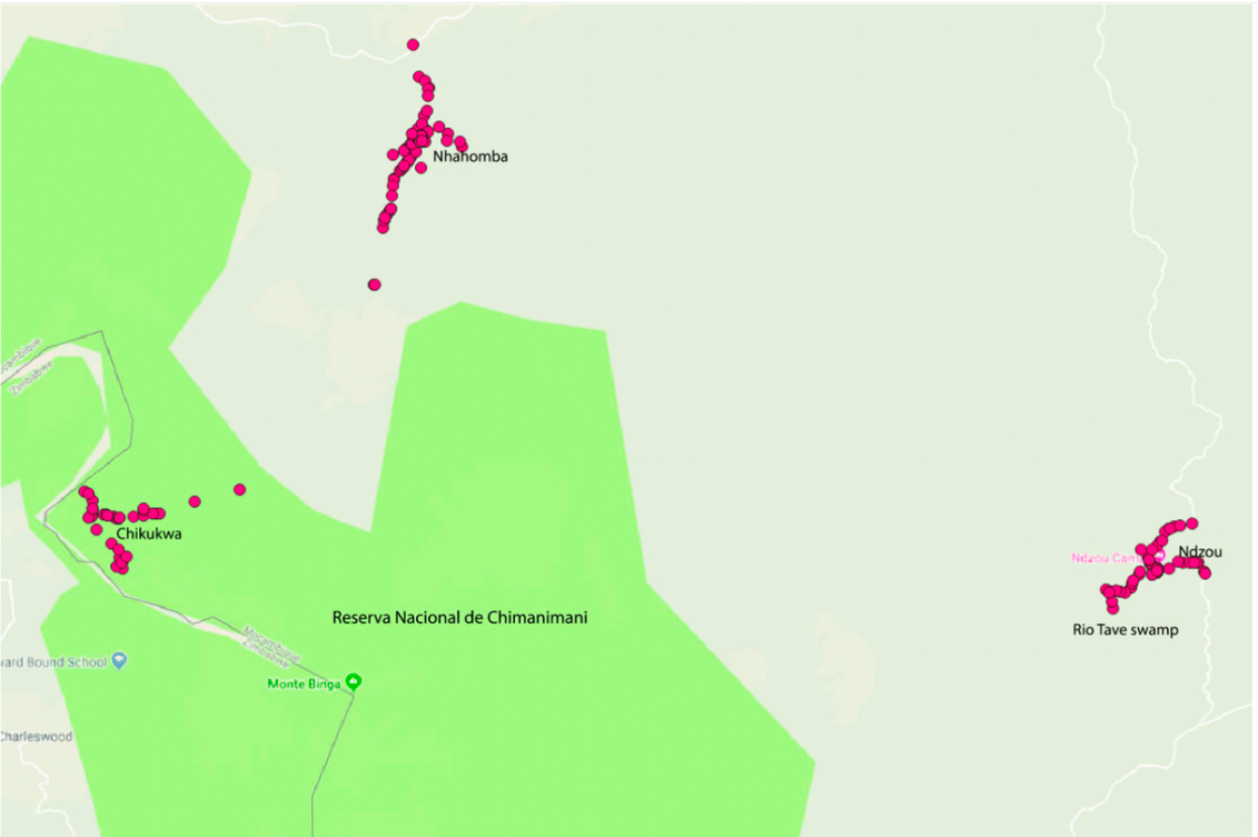 Map of collecting sites in the buffer zone and within Chimanimani National Reserve.