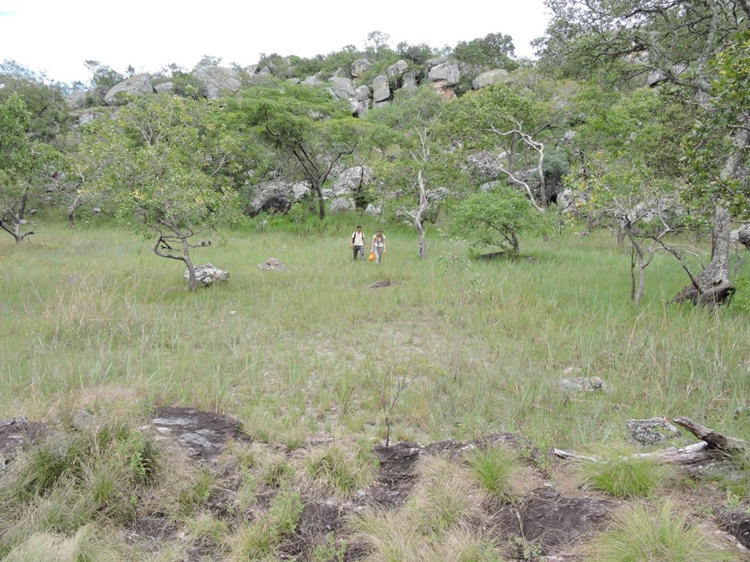 Ruth and Kaz at Kapishya. Habitat: rocky woodland and seepage dambos. Location: Kapishya Hotsprings, Chinsali District, Muchinga Province