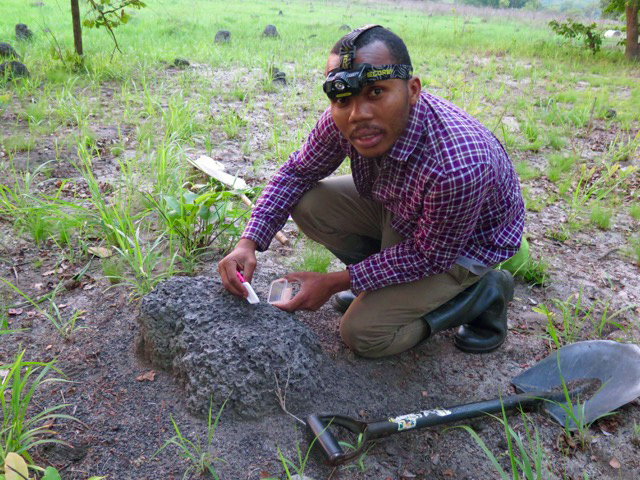 Rachid collecting termites