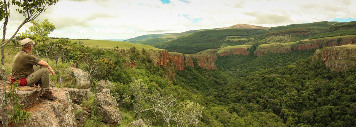 Taking in a view at Buffelskloof Nature Reserve, Mpumalanga, South Africa.