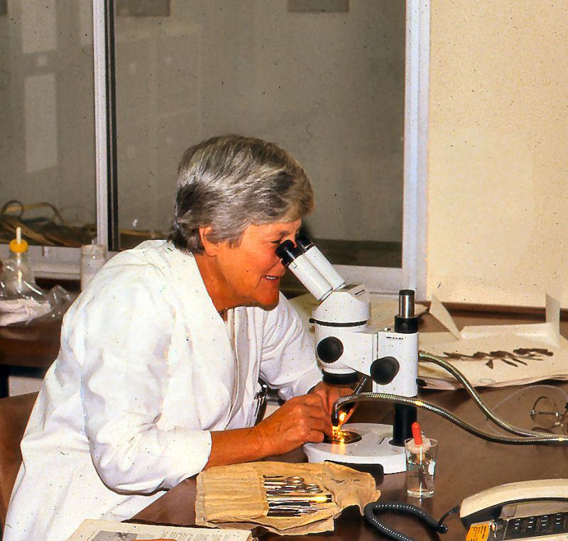 Dr Jane Browning at work