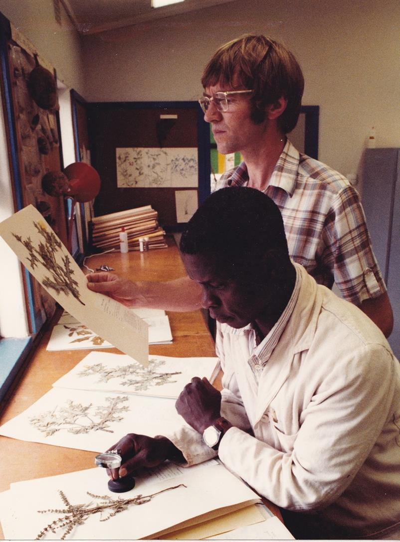 On the job' in the Mt Makulu herbarium, in 1983. My assistant was Francis Lupia who came to acquire a good knowledge of plants as he prepared the herbarium specimens