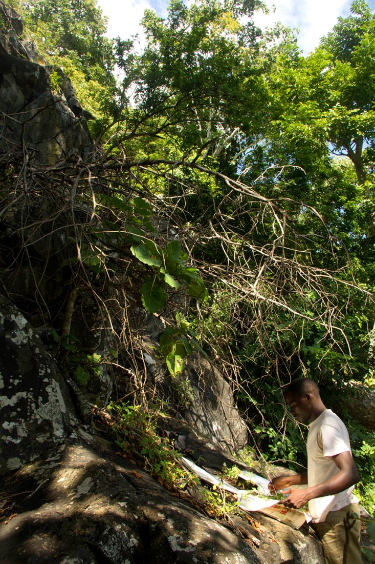 Tongai collecting material on Mt Bunga during the E.O. Wilson Biodiversity Survey of 2015.