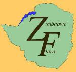 Zimbabwe flora logo